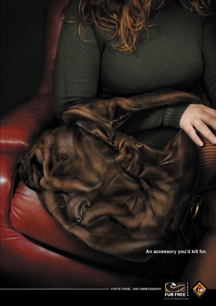 L'uso delle pellicce è crudele e inutile.Menzione Speciale per la campagna degli studenti di Accademia di Comunicazione al Design Against Fur 2008.